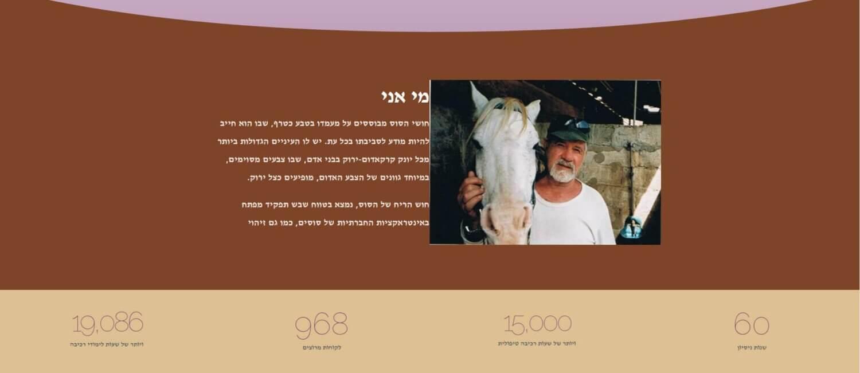 עיצוב אתרים לחוות סוסים בירושלים